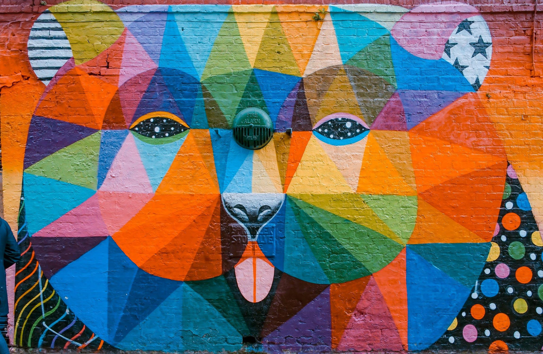 A bear in colour