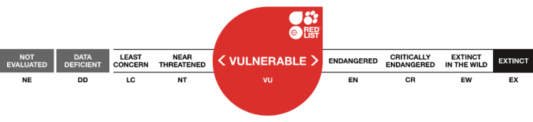 IUCN Rating vulnerable