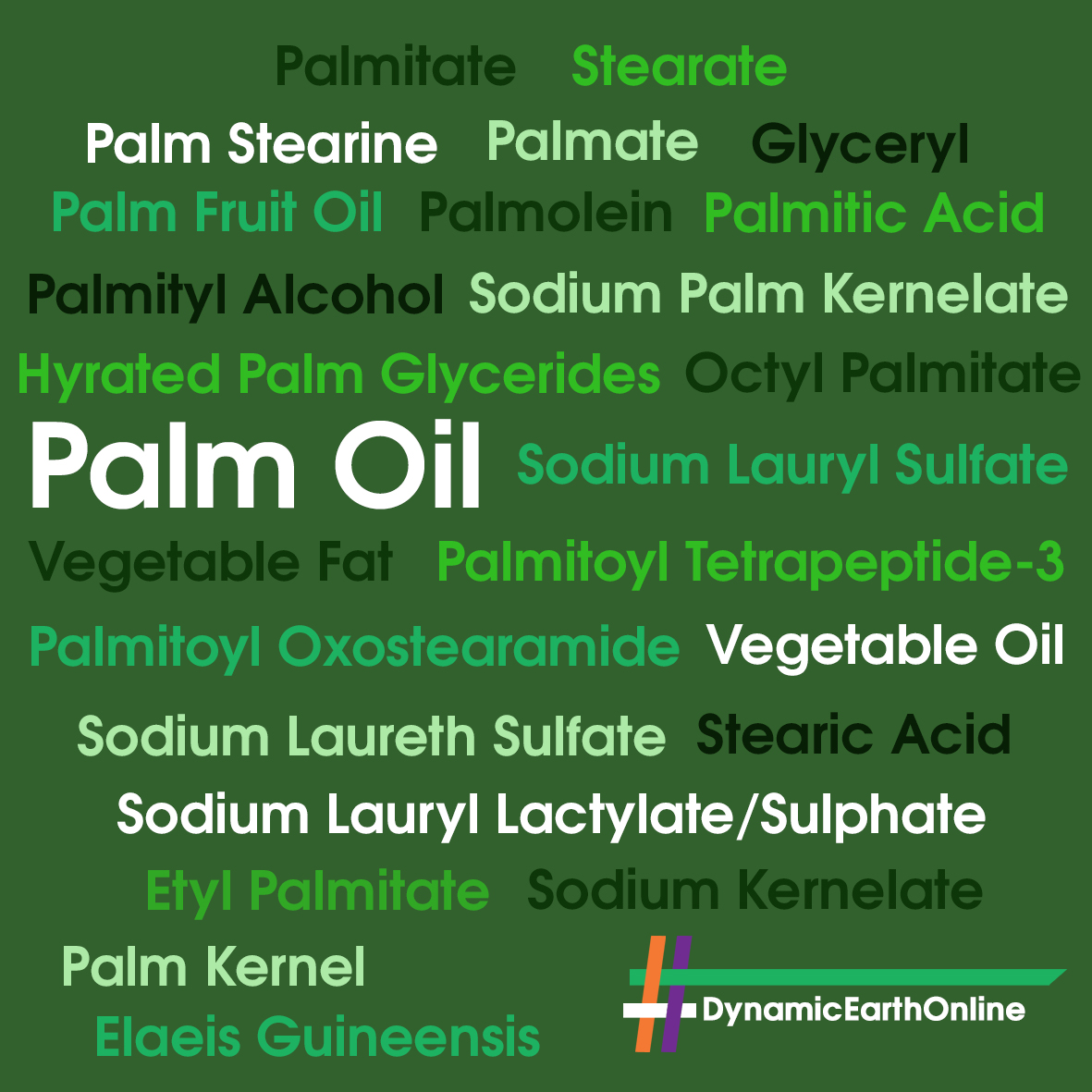 Other names for palm oil
