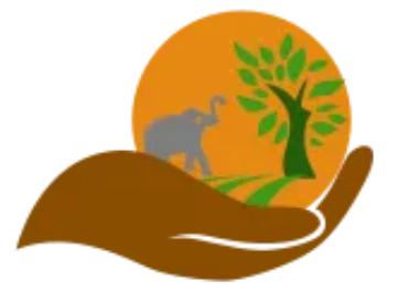 cheche winnie logo