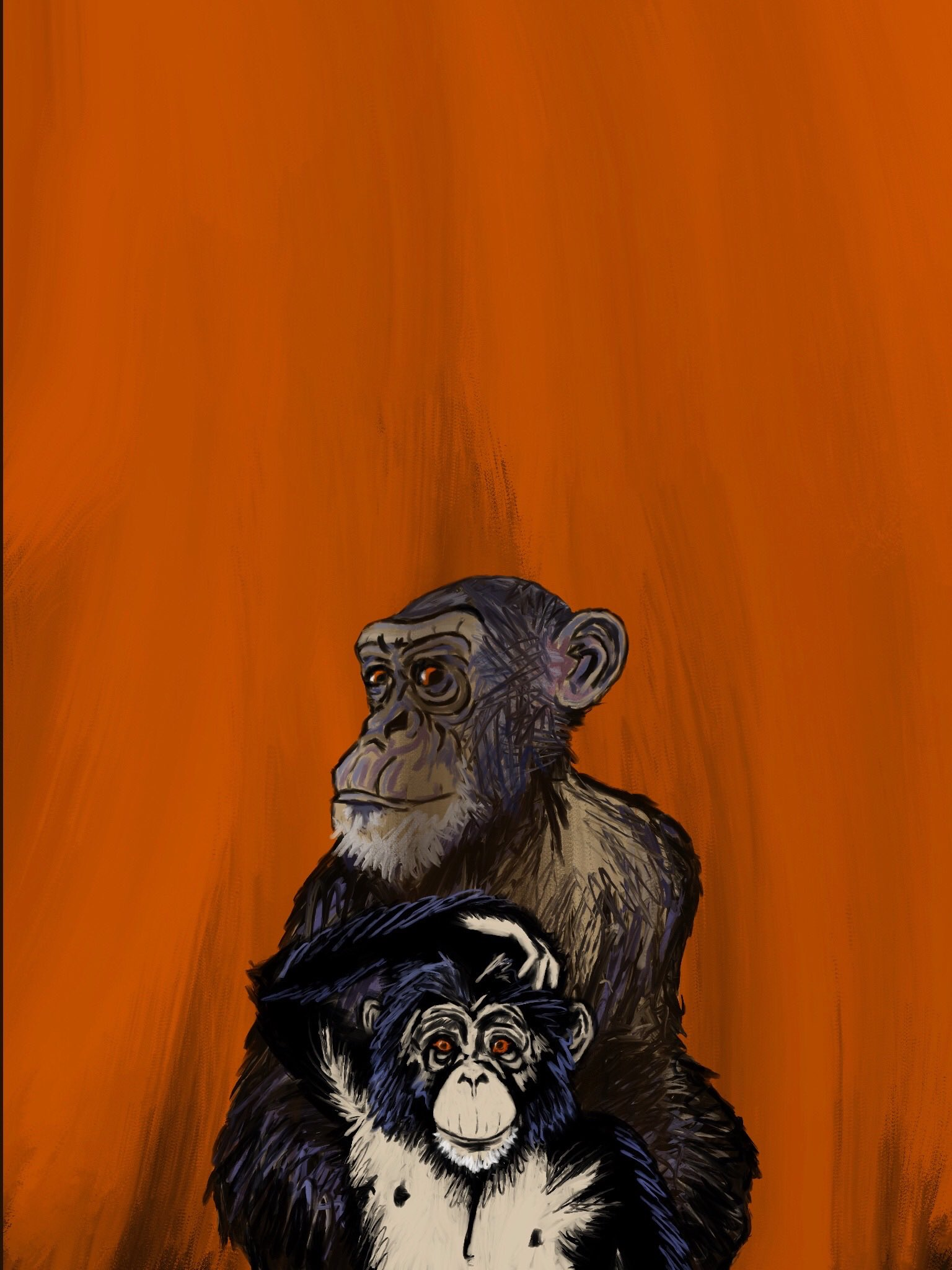 Chimpanzees by Oscar Frederick Welsh