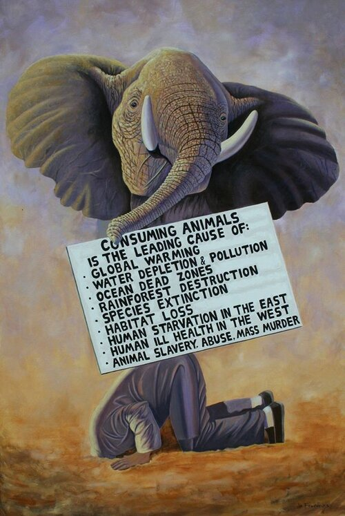 Elephant in the Room by Jo Frederiks