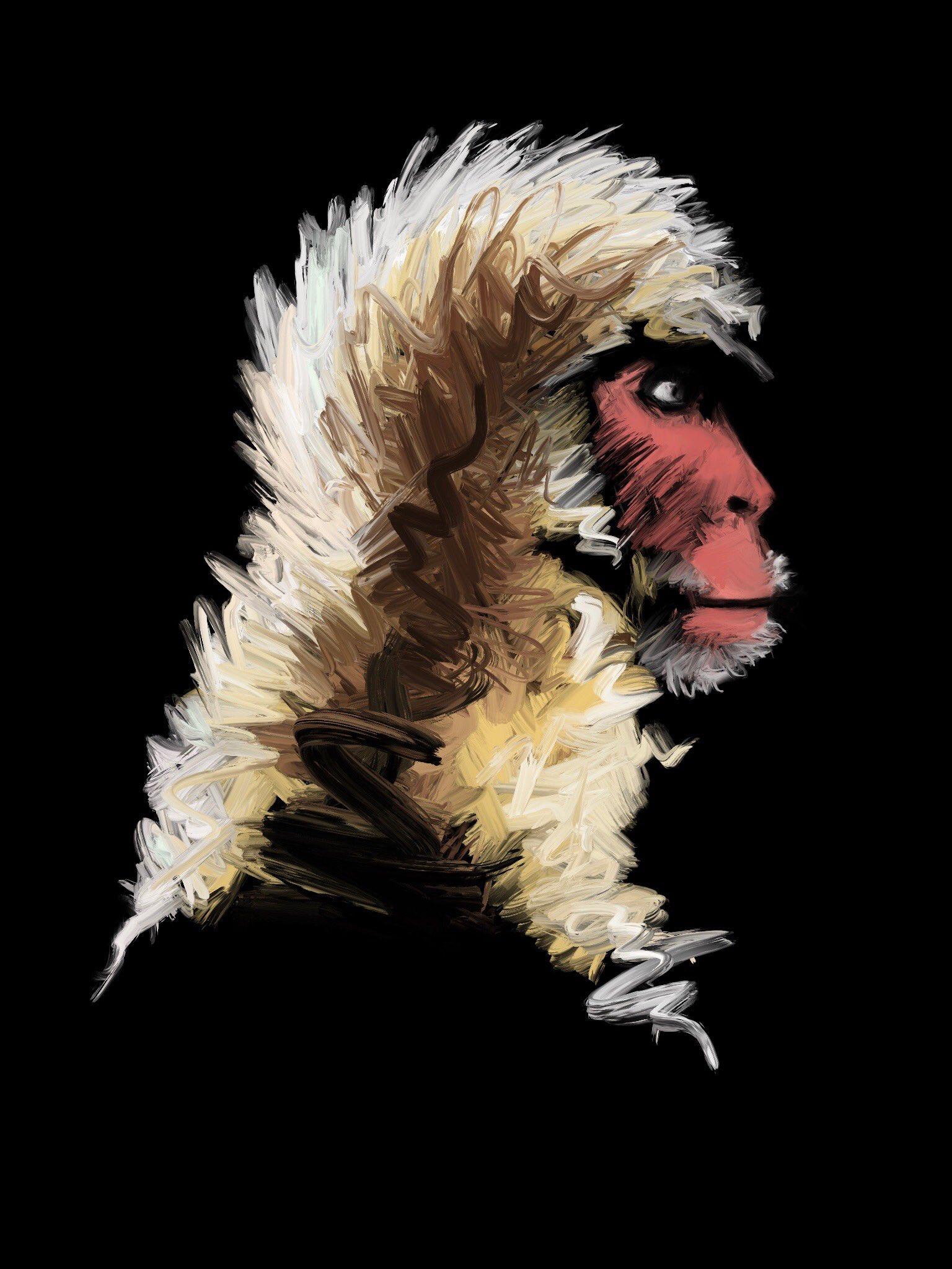 Gibbon Capuchin by Oscar Frederick Welsh