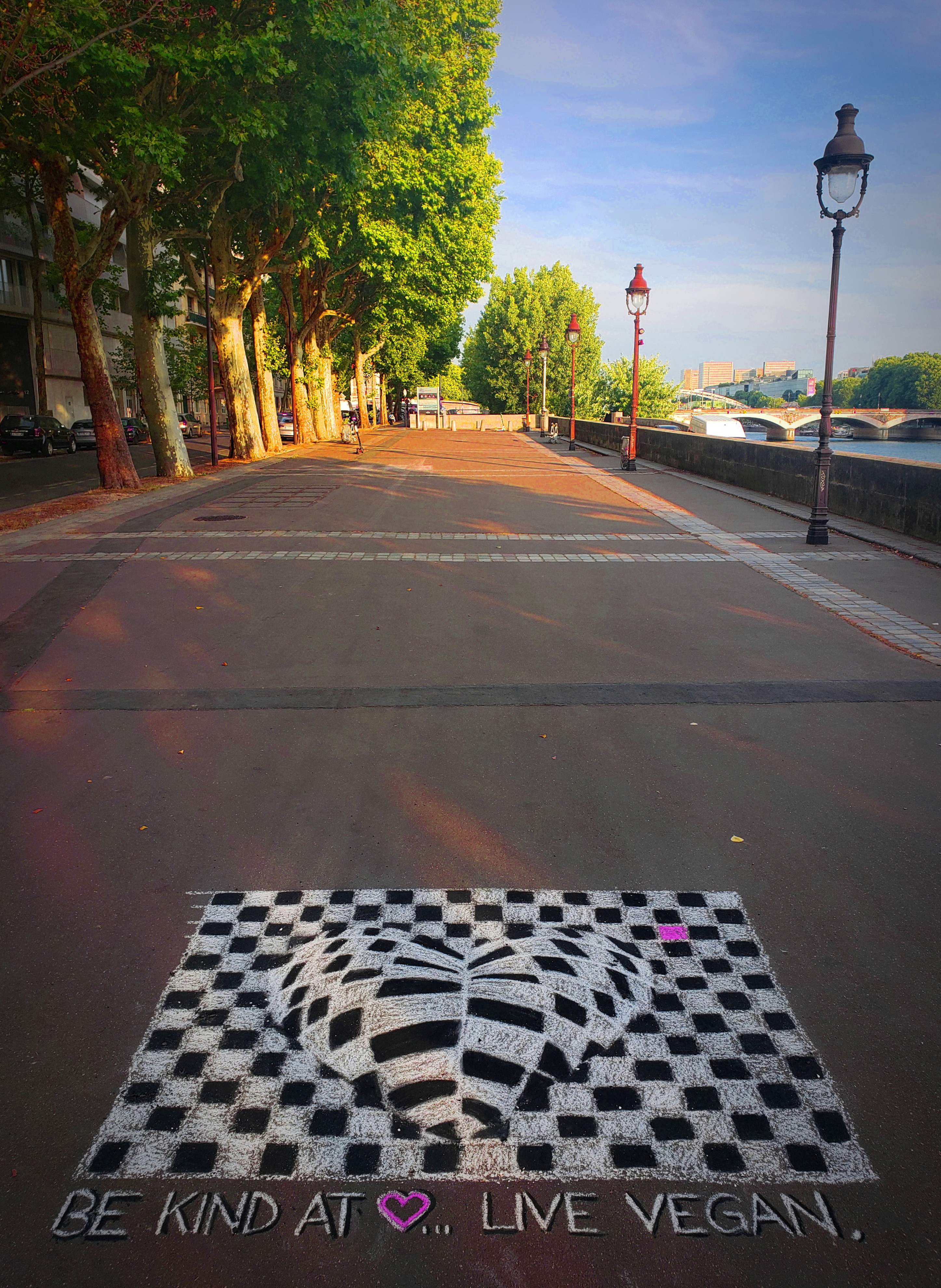 Pavement art by Nicole McLaren