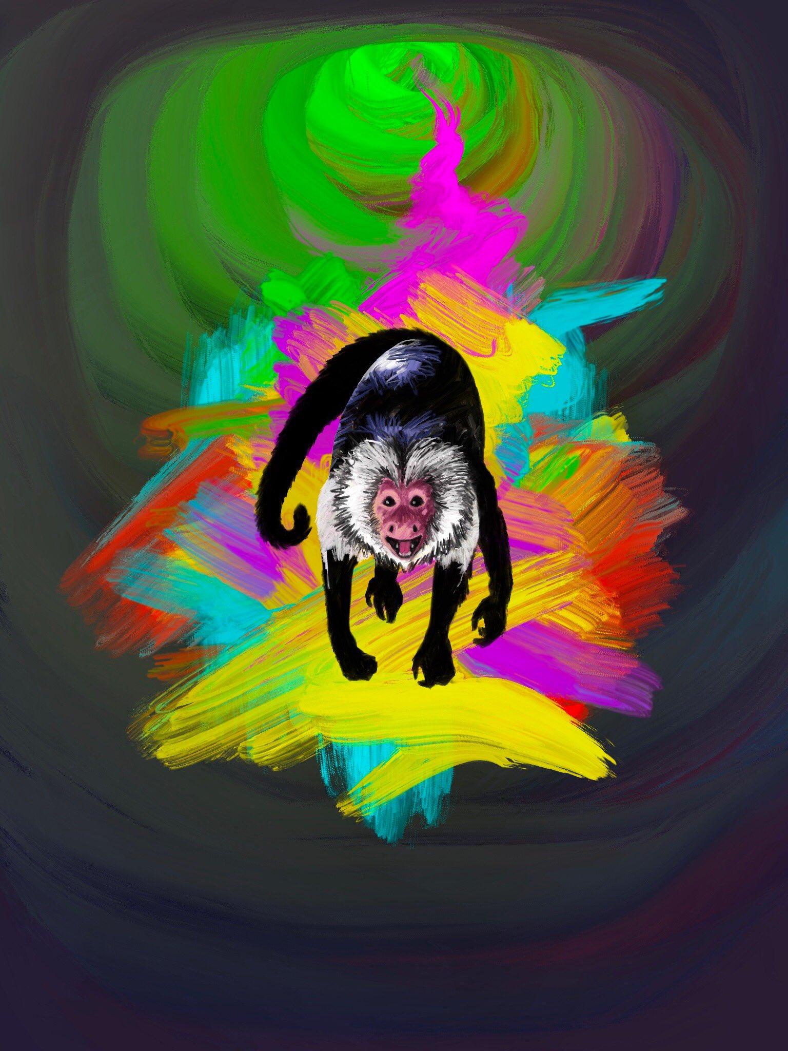 Capuchin by Oscar Frederick Welsh