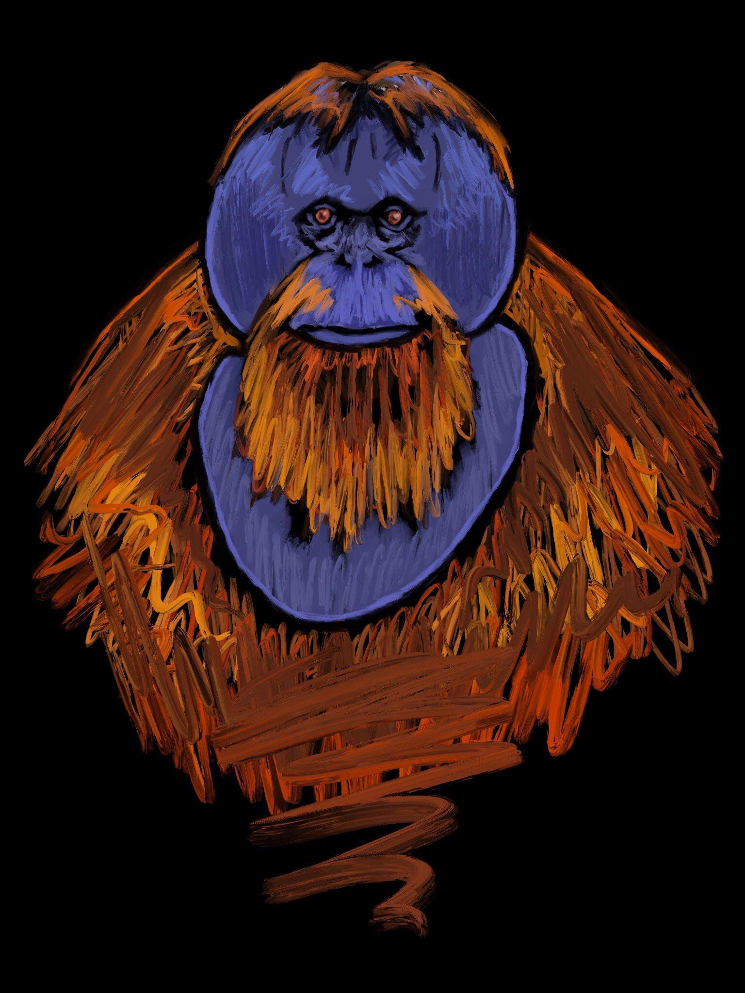 Large orangutan male by Oscar Frederick Welsh