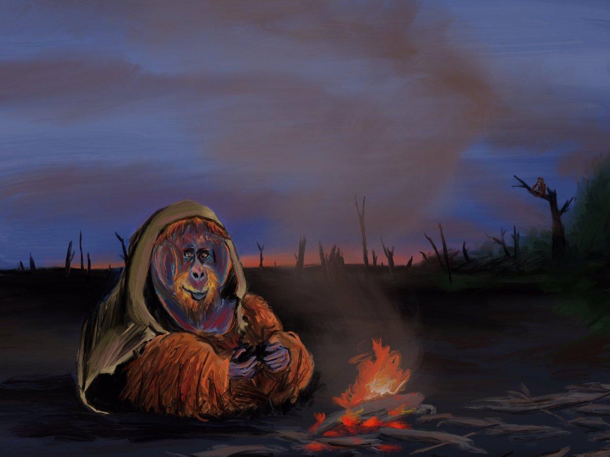 Orangutan in a broken dead forest by Oscar Frederick Welsh